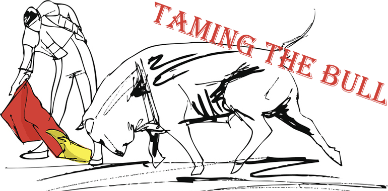 Taming The Stock Market Bull